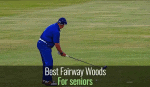 10 Best Fairway Woods for Seniors [ Reviews & Buying Tips]